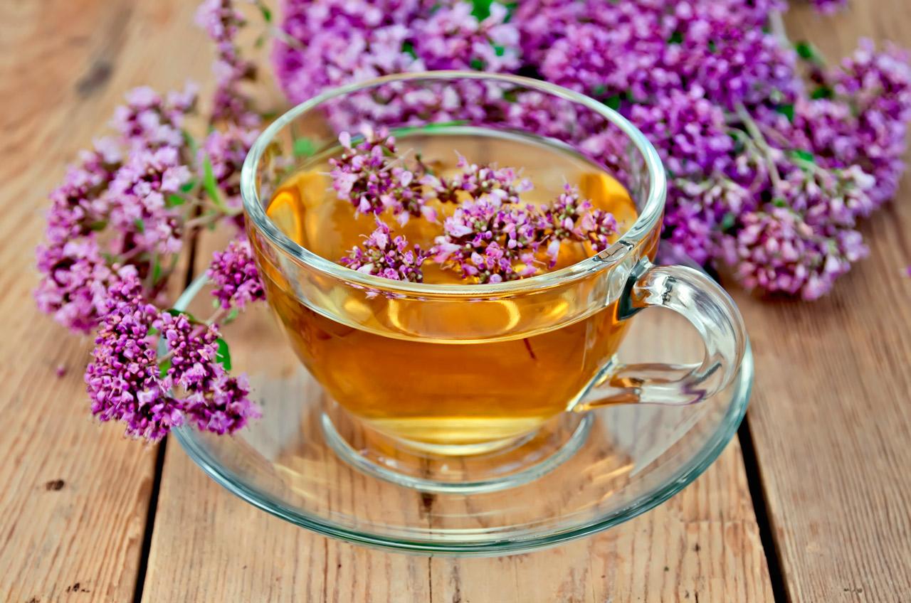 Remedio de infusi n de or gano y hierba luisa para los gases for Salsa de hierba luisa
