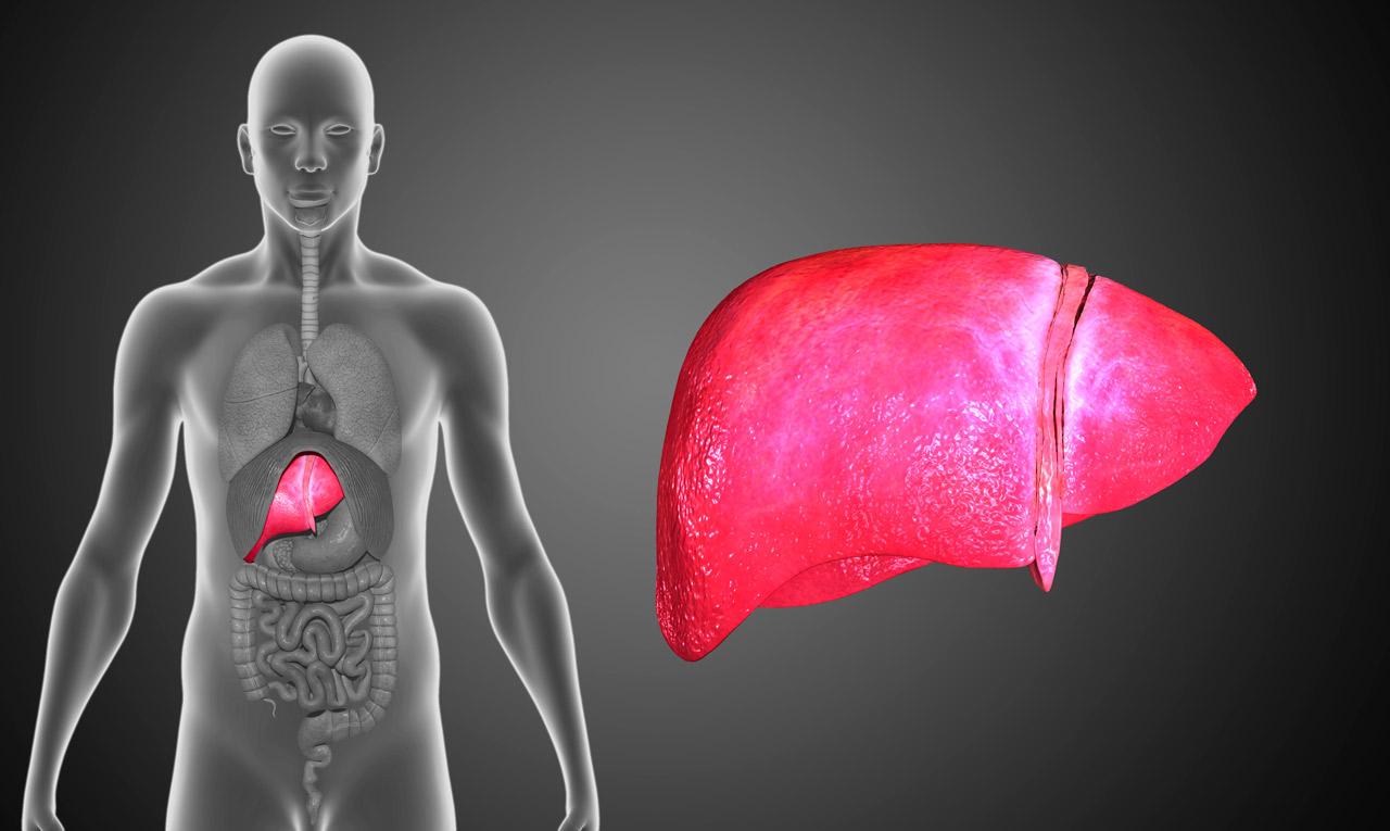 medicina para quitar el acido urico aspirina aumenta acido urico bajar acido urico homeopatia