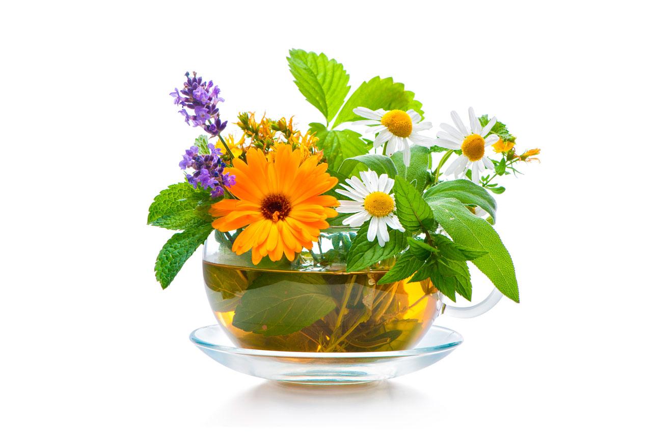 Infusión de Melisa, Salvia y Ortiga para la Urticaria