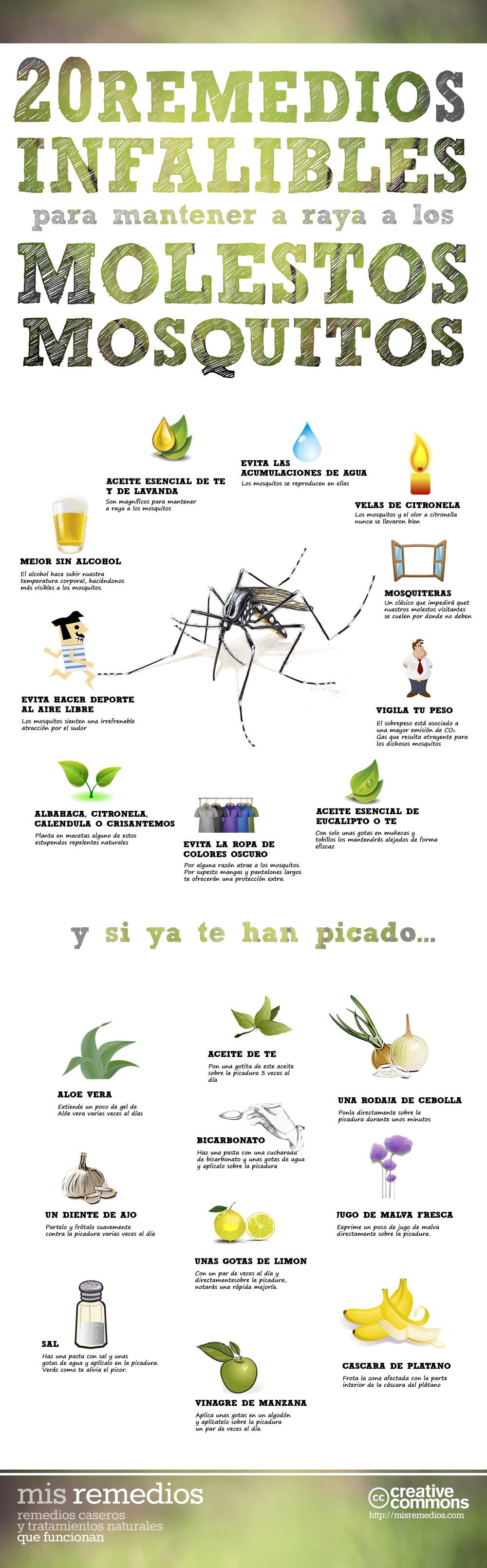 Infografia-mosquitos1