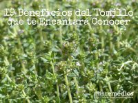 beneficios-tomillo