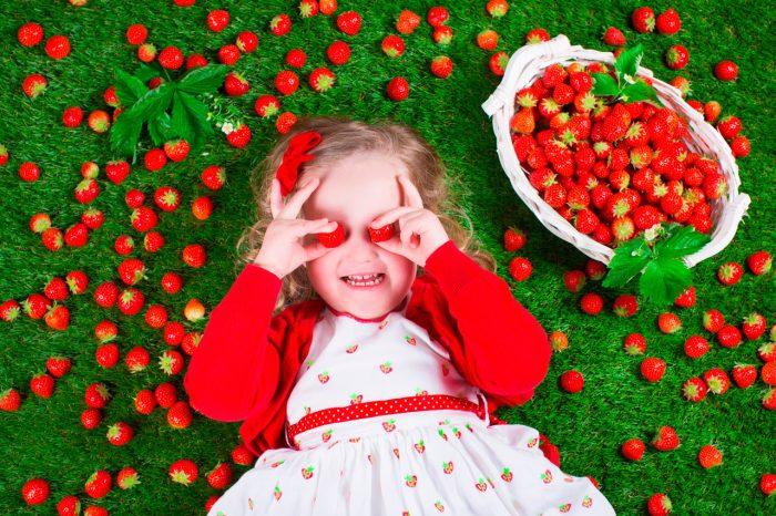 fresas-fruta (5)