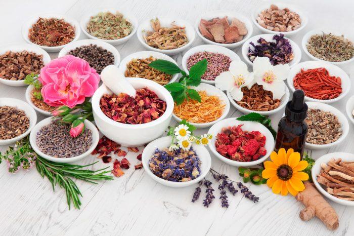 hierbas-flores-plantas-aceite-esencial-infusion-te