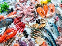pescado-marisco-dieta-pez-alimentacion
