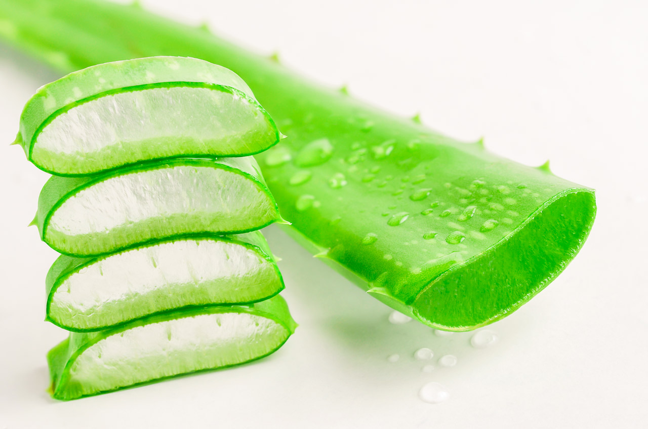 11 beneficios del aloe vera que posiblemente desconoc as - Bouture d aloe vera ...