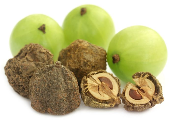 Dry and fresh amla over white background