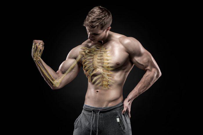 huesos-fuertes-musculo