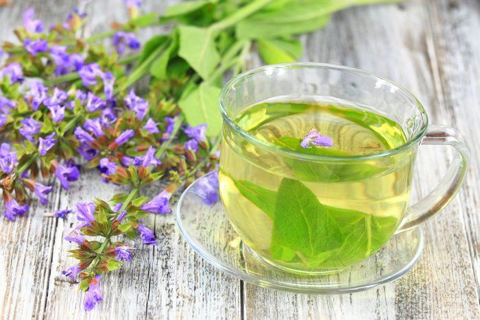 Glass of sage herbal tea. Decorated with flowering sage lat. Salvia officinalis