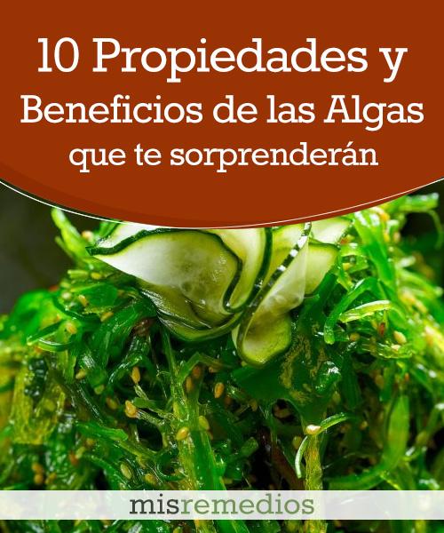 10 Propiedades y Beneficios de las Algas Marinas que te Sorprenderán