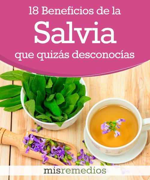 18 Beneficios de la Salvia que Quizás Desconocías