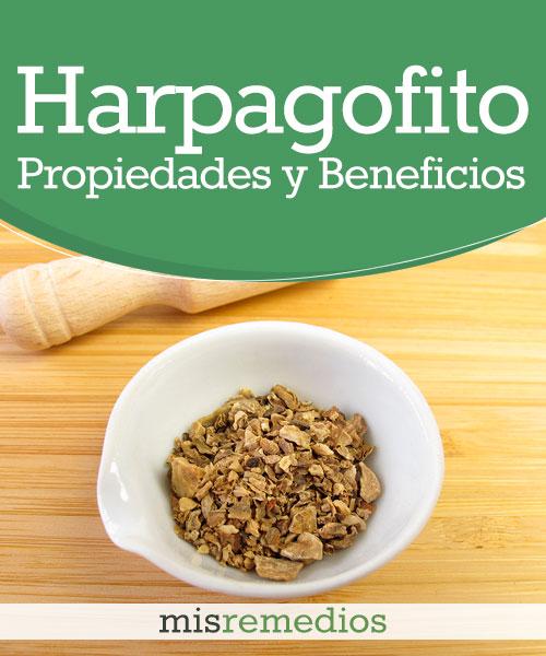 Harpagofito