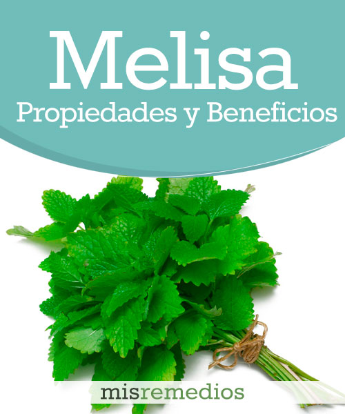 Melisa o Toronjil