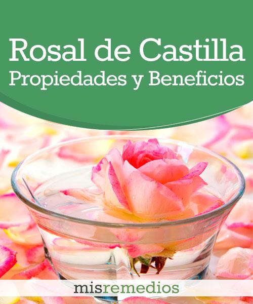 Rosal de Castilla