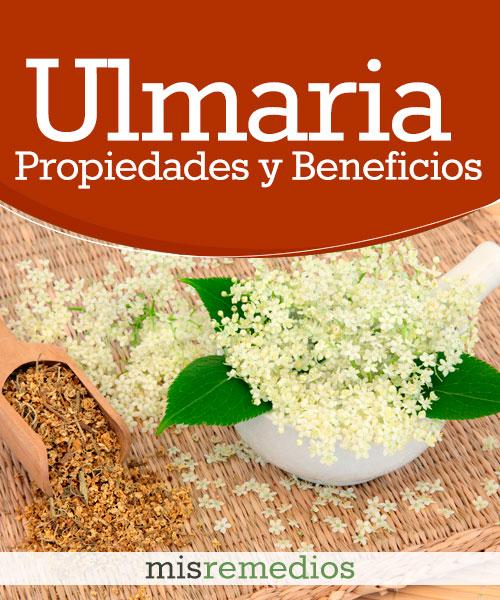 Ulmaria